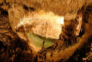 Mallorca: Cuevas del Drach and Porto Cristo Excursion