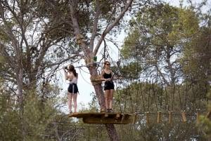 Mallorca: Forestal Park Family or Sport Course Adventure
