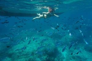 Mallorca: Formentor Beach & Lighthouse Cruise