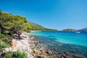 Mallorca: Glass Bottom Boat Trip to Formentor Beach