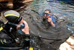 Mallorca: Palma Aquarium Tickets with Transfer