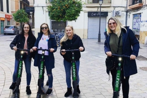 Mallorca: Premium E-Scooter Rental with Delivery Option