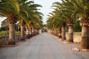 Mallorca: Privat Trabant Cabrio Tour with Wine Tasting