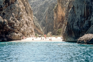 Mallorca: Scenic Island Tour from the South