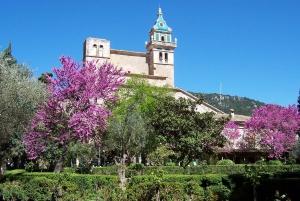 Mallorca: Soller Port and Valldemossa