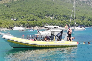 Mallorca : Speedboat, Snorkelling and Swimming Adventure