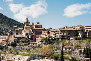 Mallorca: Tramuntana Tour with Historic Railway Ride