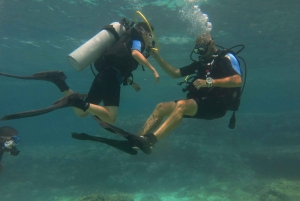 Mallorca: Try Scuba Diving in a Beautiful Nature Reserve