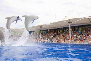 Marineland Tickets with transfers from the North
