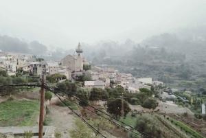Palma and Valldemossa: Half-Day Tour from Palma Port