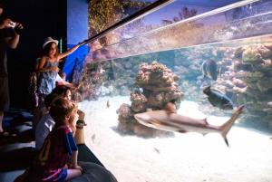 Palma Aquarium Ticket & optional Aquadome Ticket
