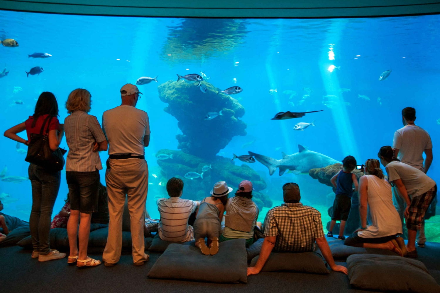 Palma Aquarium Tickets with Transfer