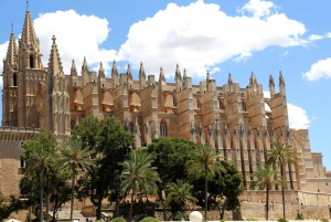 Palma: City Tour with an Author