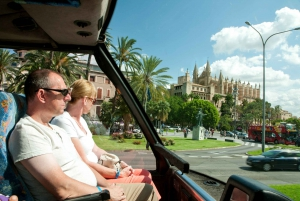 Palma de Full-Day Tour with Departure Options
