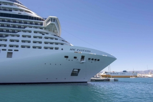 Palma de Mallorca: 1-Hour Sightseeing Boat Tour