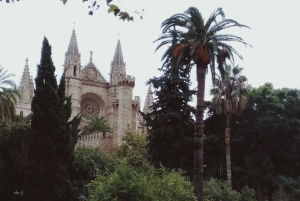 Palma de Mallorca 6-Hour Private Group Shore Excursion