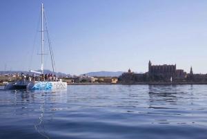Palma de Mallorca: Catamaran Sailing Tour with Lunch