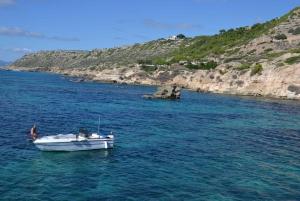 Palma de Mallorca: Full or Half-Day Boat Trip with Brunch