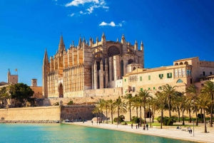 Palma de Mallorca: Old Town Guided Tour & Cathedral Visit