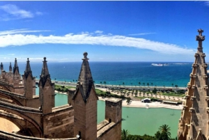 Palma de Old Town Guided Tour & Cathedral Visit
