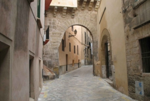 Palma del Bus and Boat Tour