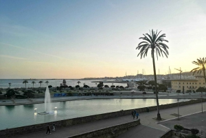 Palma: Guided Walking Tour With Local Author