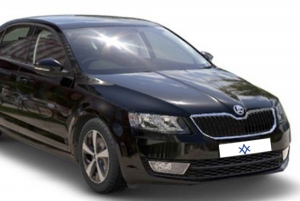 Private Airport Transfer to/from Palma City