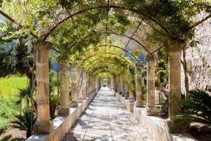 Sóller: Jardines de Alfabia Entrance Ticket