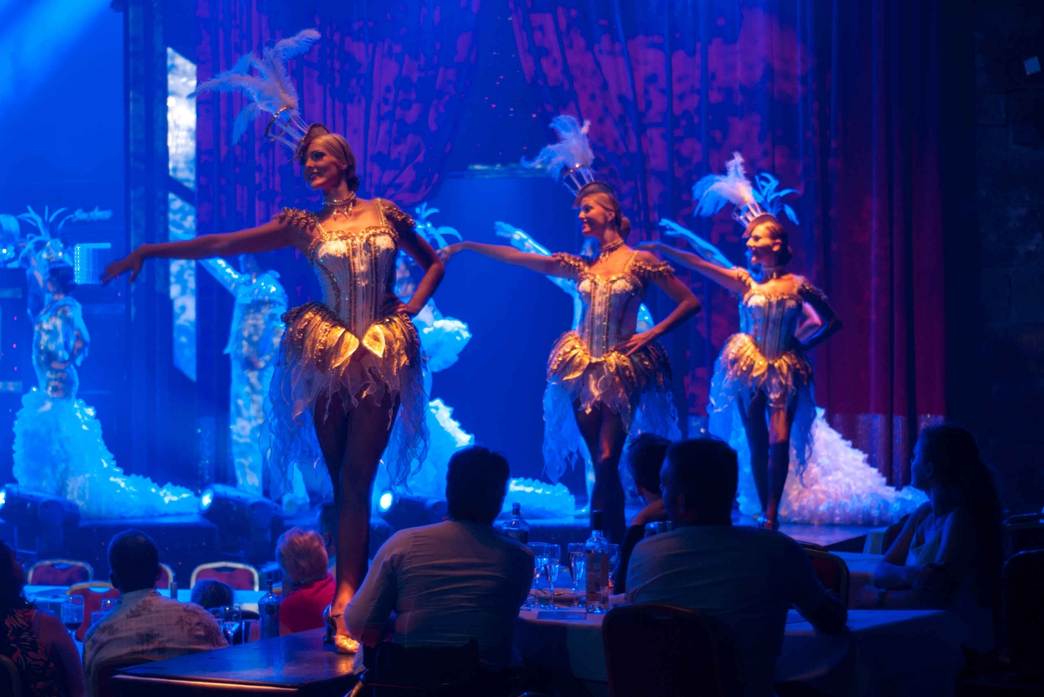 Son Amar VIP Dinner and Show