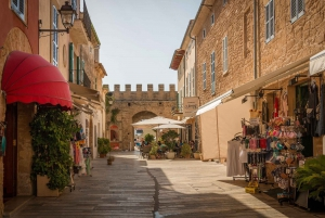 Tour of Formentor: Market, Beach, and Alcudia Town