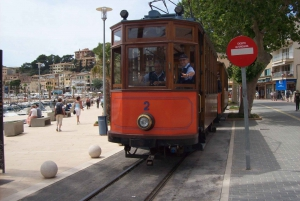 Valldemosa and Soller Day Tour with Tram and Bus