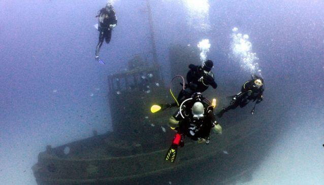 Dawn Diving