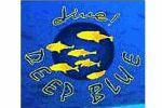 Dive Deep Blue