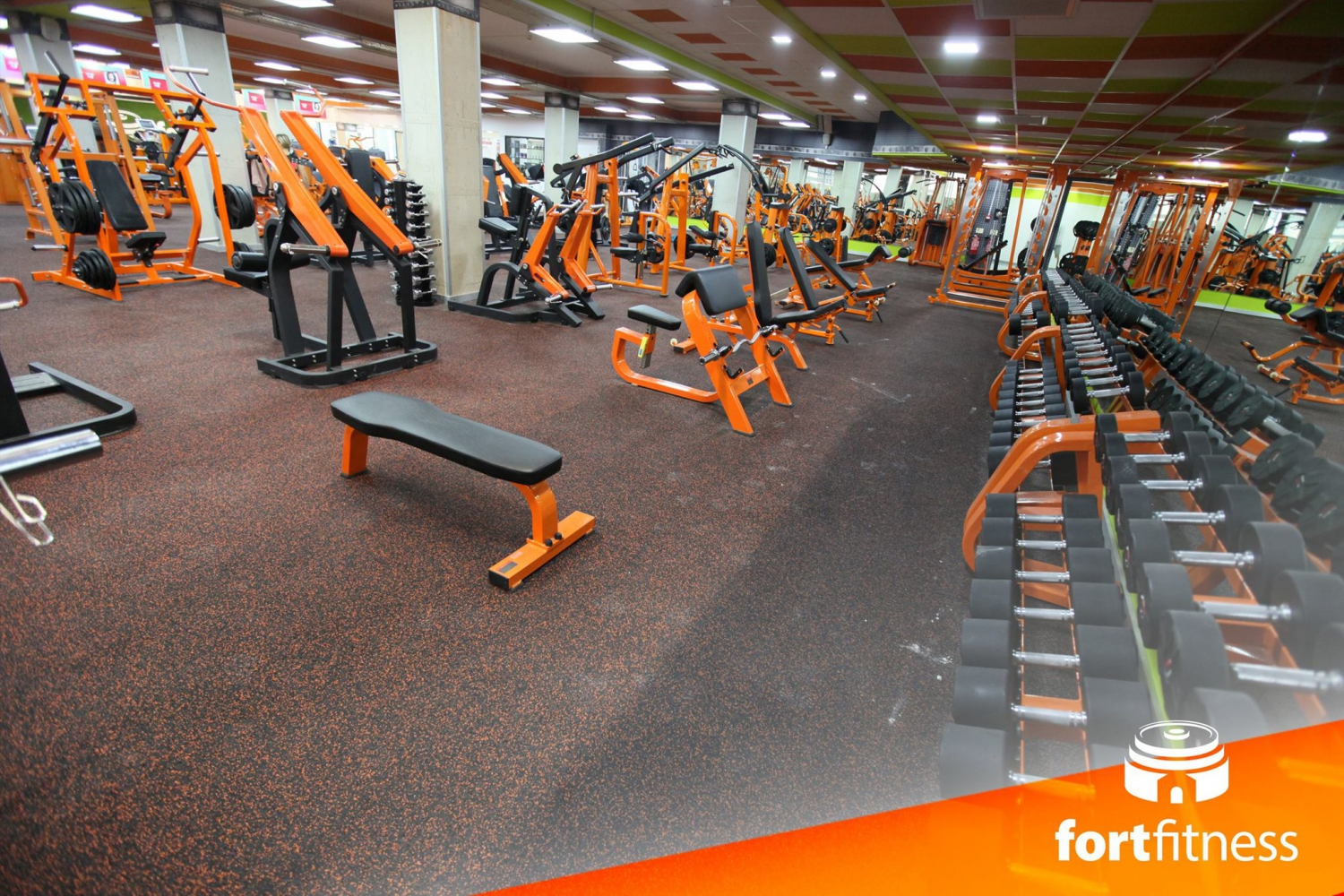 Fort Fitness