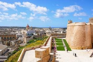 Gozo: Private Full Day Island Tour