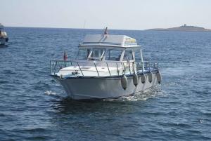 Malta: Private Charter Motor Cabin Cruiser
