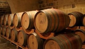 Marsovin Wine Tasting Tours