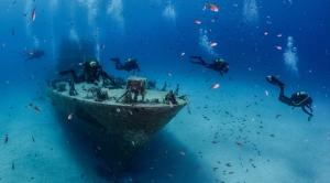 OrangeShark Diving Centre