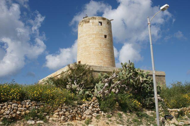 Garden Centre: My Guide Malta