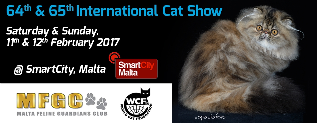64th & 65th International Cat Shows