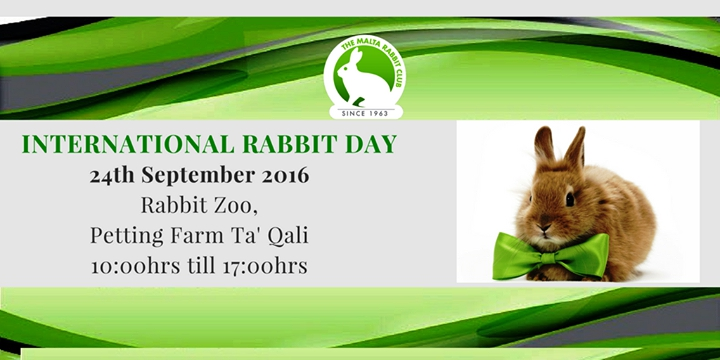 International Rabbit Day 2016