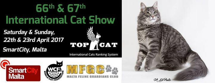 Malta Top Cat Final 2017 ~ April