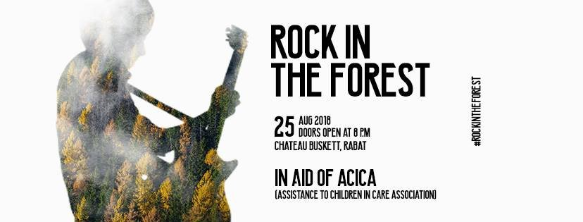 Rock in the Forest
