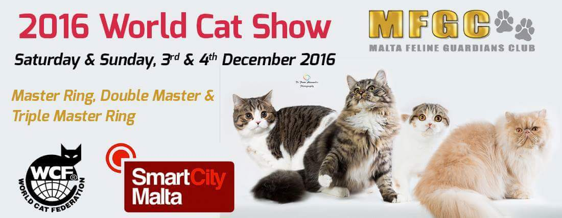 World Cat Show 2016 Malta - WCF