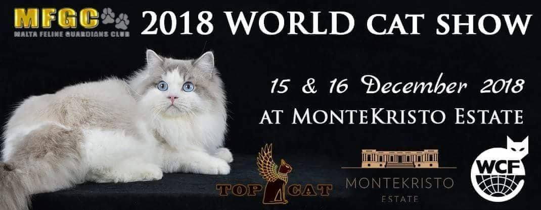 WORLD CAT SHOW