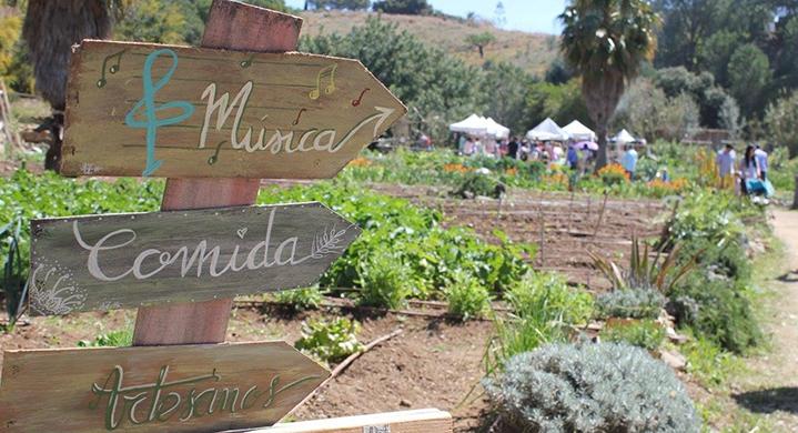 Arboretum Marbella Autumn Fair