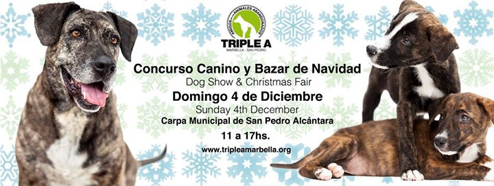 Concurso Canino y Bazar de Navidad / Dog Show and Christmas Fair