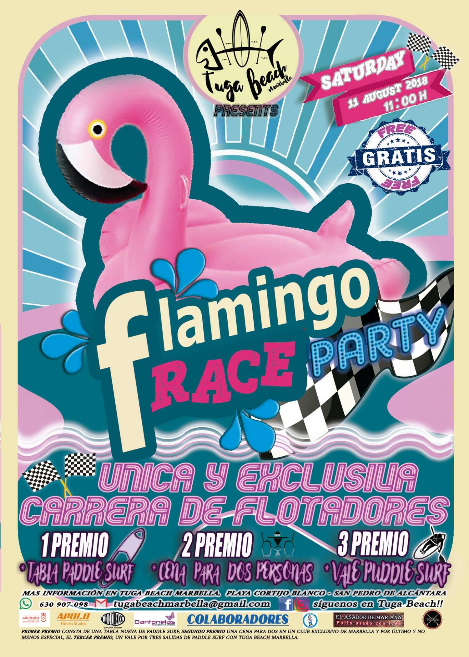 Flamingo Race Party