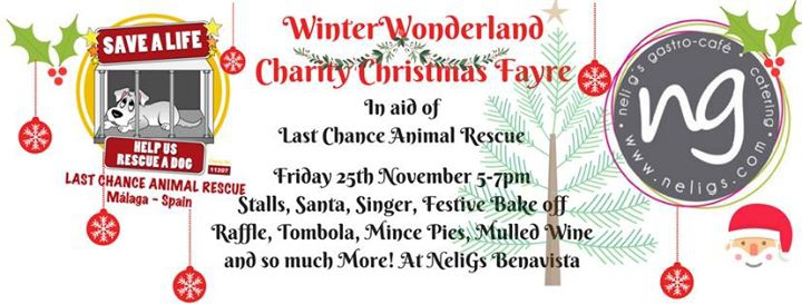 WinterWonderland Charity Xmas Fayre