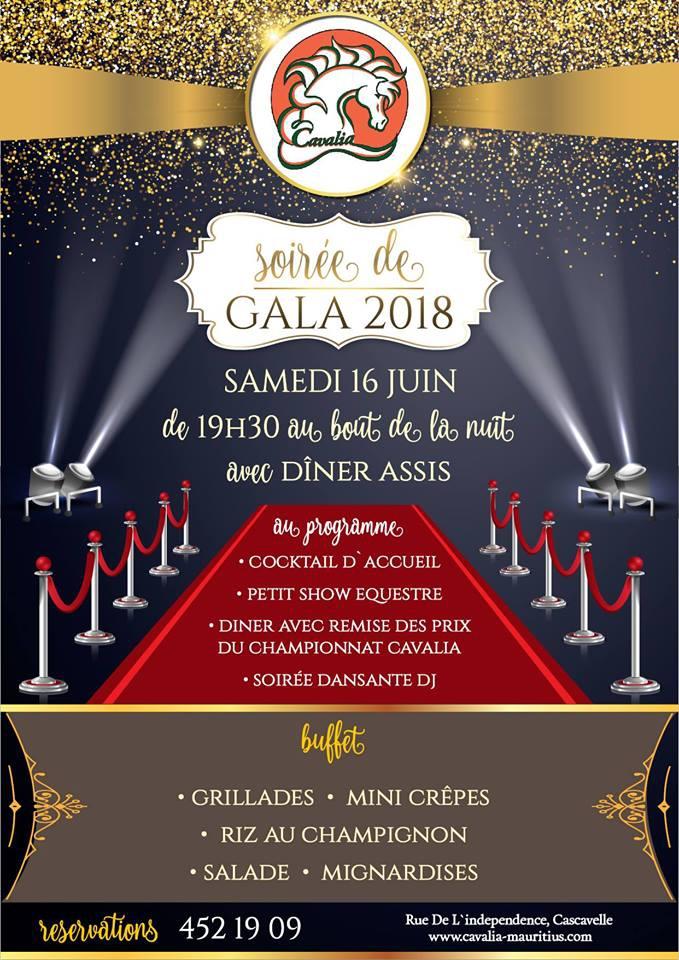 Gala 2018 of Cavalia